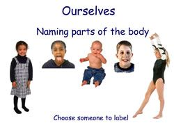 labelling-body-parts